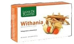 Withania 60 capsule 940376510