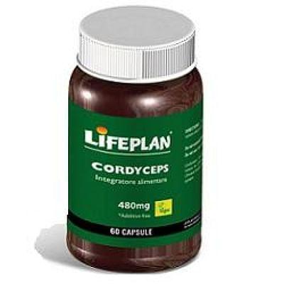 Cordyceps 60 capsule